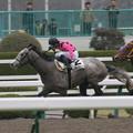 Photos: ストラディヴァリオ レース(06/03/18・1R)