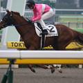 Photos: サクラアリュール 返し馬(20/02/16・8R)