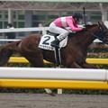 Photos: サクラアリュール  レース(20/02/16・8R)