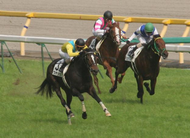 ウオッカ レース_1(07/05/27・第74回 東京優駿)