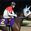 Photos: トップレベル(20/01/19・山口シネマ杯 第61回 花吹雪賞)