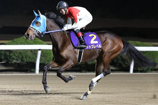 Photos: トップレベル 返し馬(20/01/19・山口シネマ杯 第61回 花吹雪賞)