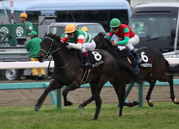 シーズンズギフト レース(20/01/26・若竹賞)
