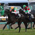 Photos: シーズンズギフト レース(20/01/26・若竹賞)