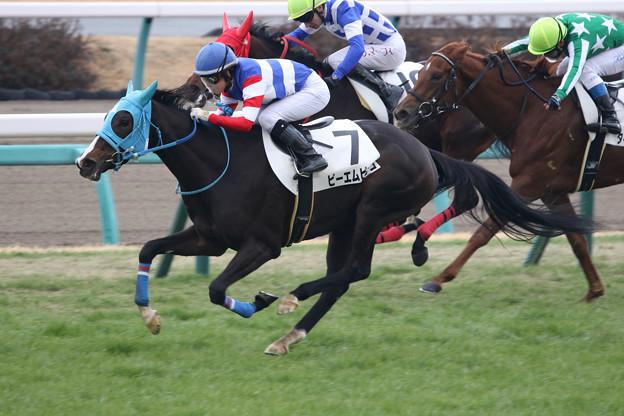 ピーエムピンコ レース(20/01/12・5R)