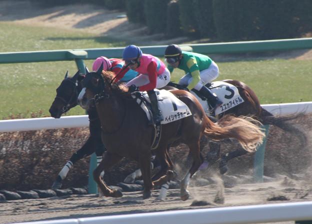 ペイシャチャーム レース(20/01/13・新馬戦)