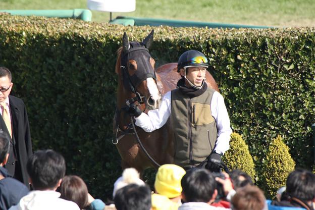ペイシャチャーム(20/01/13・新馬戦)