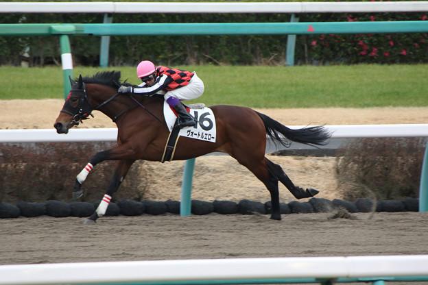 ヴォートルエロー レース(20/01/26・新馬戦)