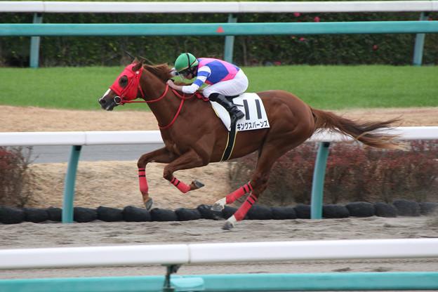 キングスバーンズ レース(19/12/21・新馬戦)