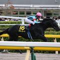 Photos: アディラート レース(19/10/06・グリーンチャンネルカップ)