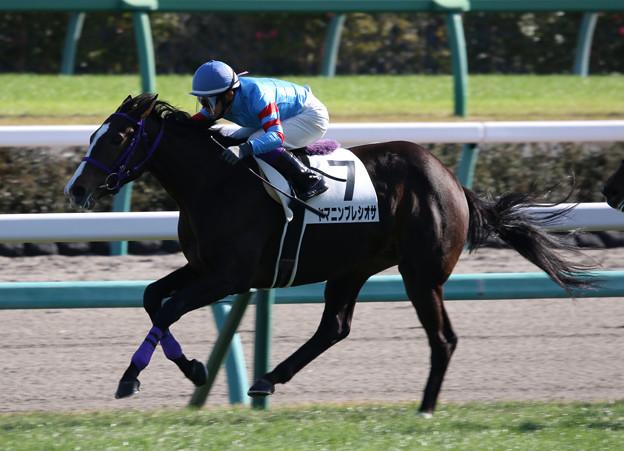 ヤマニンプレシオサ レース(19/11/30・新馬戦)