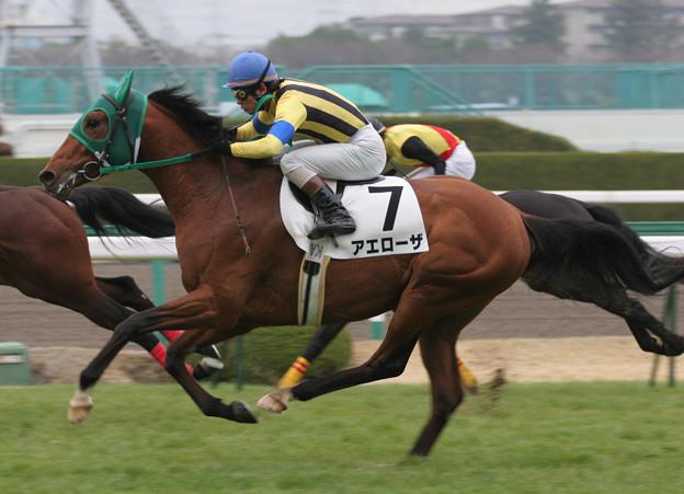 Photos: アエローザ レース(06/03/18・新馬戦)