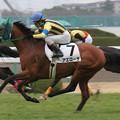 アエローザ レース(06/03/18・新馬戦)