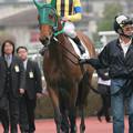 Photos: アエローザ(06/03/18・新馬戦)