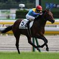 ランフォザローゼス レース(18/10/20・新馬戦)