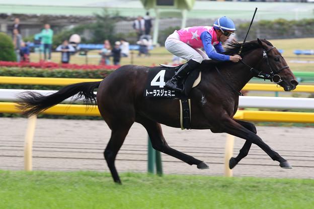 トーラスジェミニ レース(18/11/04・百日草特別)