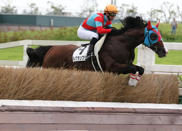 ルグランフリソン レース(19/07/21・1R)