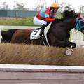 Photos: ルグランフリソン レース(19/07/21・1R)