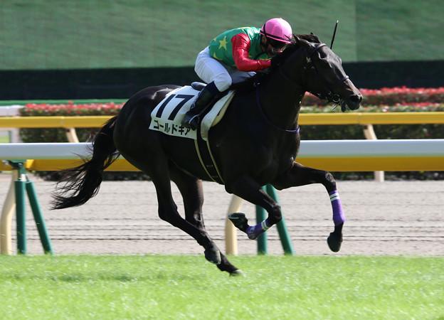 ゴールドギア レース(17/10/09・新馬戦)