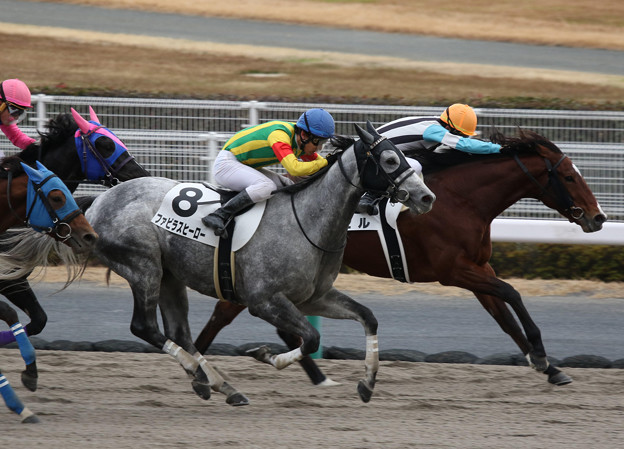 ファビラスヒーロー レース(18/12/08・3R)