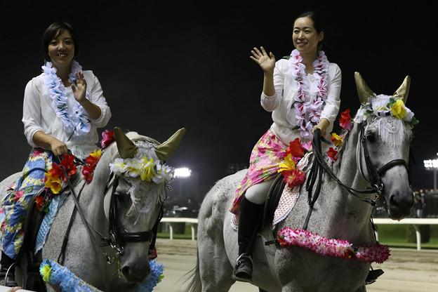 第16回 スパーキングサマーカップ 誘導馬(19/08/22)