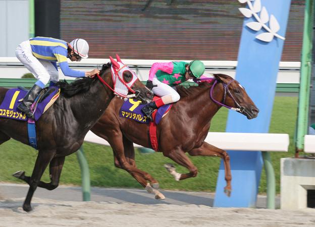 マツリダパレス レース(05/08/07・第37回 不来方賞)