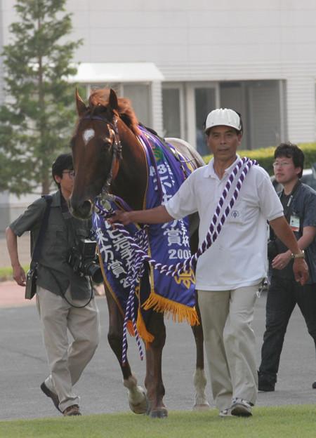 マツリダパレス(05/08/07・第37回 不来方賞)