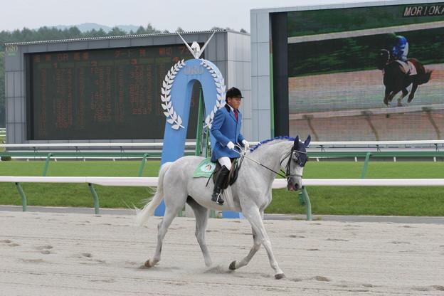 盛岡競馬場 誘導馬(05/08/07)