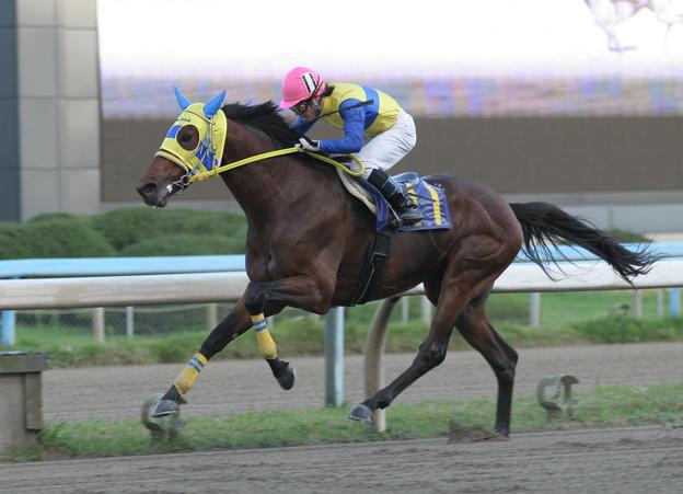 キクノサンデー レース(05/10/16・第40回 サラブレッド大賞典)