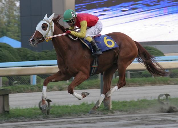 チヨノドラゴン レース(06/10/15・第41回 サラブレッド大賞典)