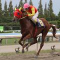 Photos: ノーブルシーズ レース(08/10/12・第43回 サラブレッド大賞典)