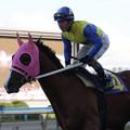 Photos: セイリュウザクラ 返し馬(09/10/11・第44回 サラブレッド大賞典)