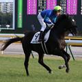 Photos: ソロフレーズ 返し馬(19/01/26・12R)