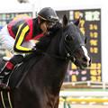 Photos: ブラックスピネル 返し馬(19/01/26・白富士ステークス)