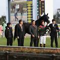 Photos: 白富士ステークス 口取り(19/01/26・白富士ステークス)
