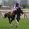 Photos: 第5回 ジョッキーベイビーズ_3(13/11/03)