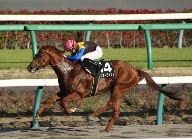 レピアーウィット レース(19/04/13・利根川特別)