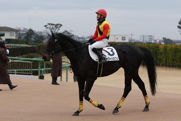 フォワードカフェ レース後(20/01/12・4R)