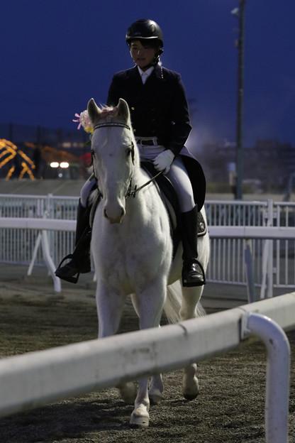 誘導馬 プリンス_3(19/03/03・第50回 イレネー記念)