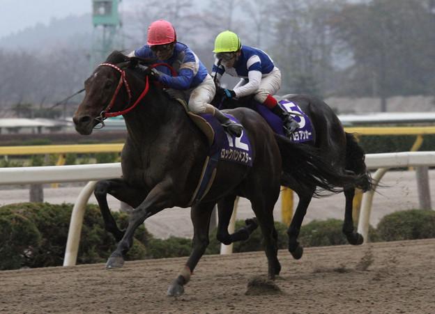 ロックハンドスター レース_1(10/11/22・第23回 ダービーグランプリ)