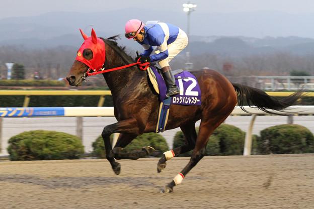 ロックハンドスター 返し馬(10/11/22・第23回 ダービーグランプリ)