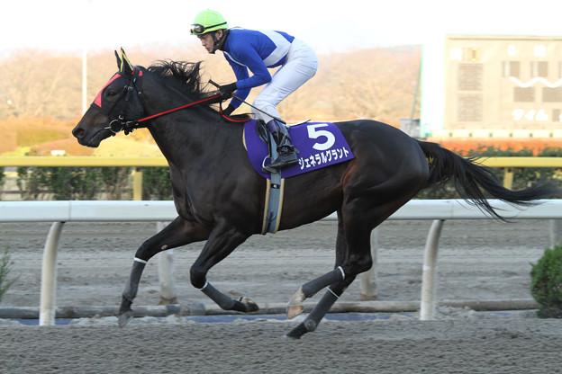 ジェネラルグラント 返し馬(13/11/24・第26回 ダービーグランプリ)