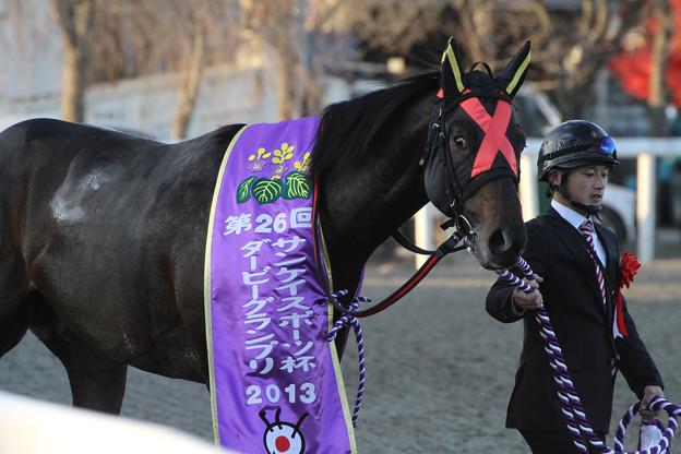 ジェネラルグラント(13/11/24・第26回 ダービーグランプリ)