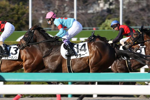 サラーブ レース(19/03/09・12R)