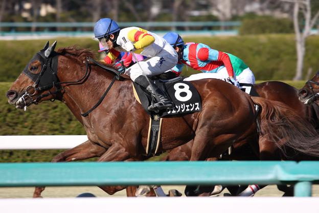 ヴェンジェンス レース_2(19/03/09・ポラリスステークス)