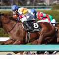 Photos: ヴェンジェンス レース_2(19/03/09・ポラリスステークス)