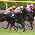 Photos: ダノンカモン レース(08/10/25・いちょうステークス)