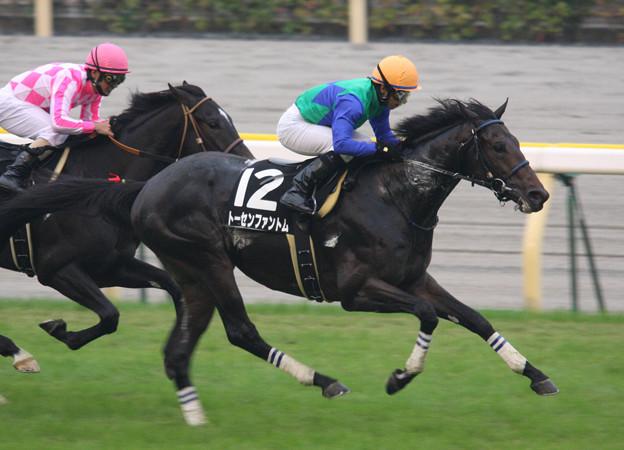 トーセンファントム レース(09/10/24・いちょうステークス)