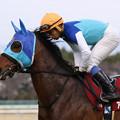 Photos: アドマイヤエイカン 返し馬(19/03/17・第67回 阪神大賞典)