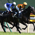 ネプチュナイト レース(19/05/11・緑風ステークス)